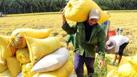 Phó Thủ tướng Hoàng Trung Hải tại Hội nghị mới đây cho biết, Việt Nam có thể làm giàu được bằng nông nghiệp.