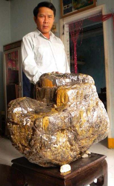 Ông Lê Văn Bảy bên gốc cây gỗ hóa thạch hàng ngàn năm tuổi.