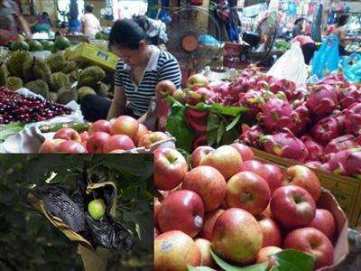 Theo Cục trưởng Cục BVTV, người tiêu dùng đã sử dụng hoa quả trong số 300 tấn hoa quả nhiễm độc kia vẫn đang còn rất an toàn.