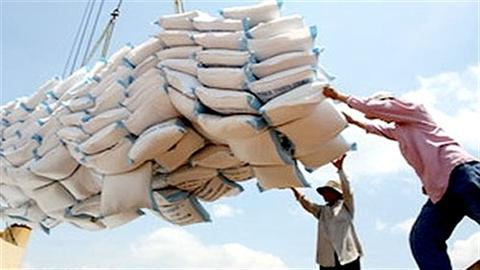 Xuất khẩu gạo Việt: Trái đắng ngắt vì mua rẻ bán rẻ