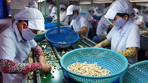Tránh phụ thuộc Trung Quốc, Việt Nam chọn châu Phi