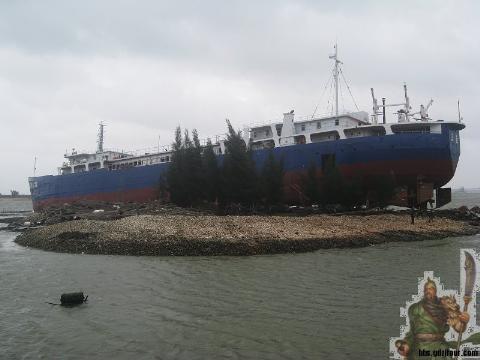 """Tàu bổ trợ chế biến ngư nghiệp mang số hiệu """"Quỳnh Tam Á"""" F8138"""