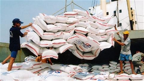 Thêm Vinafood 1 xuất khẩu gạo: Nông dân thêm...
