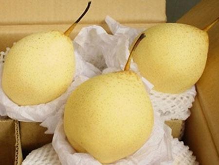 Lê, lựu, táo... Trung Quốc để vài tháng trong môi trường bình thường vẫn tương ngon, không bị hỏng.