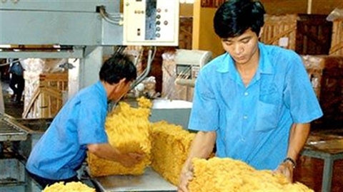 Giá cao su rớt thảm: Dân gánh thay Tập đoàn Cao su?