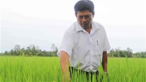 'Xuất khẩu' nông dân: Sang Lào làm chuyên gia, lương 20 triệu/tháng