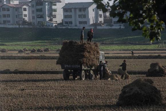 Sản xuất lương thực trong quá khứ từng là một thách thức với chính phủ Triều Tiên. Kể từ sau khi bị nạn đói tàn phá những năm 1990, đất nước này tập trung vào việc tăng sản lượng lúa gạo và một vài thực phẩm giàu protein.