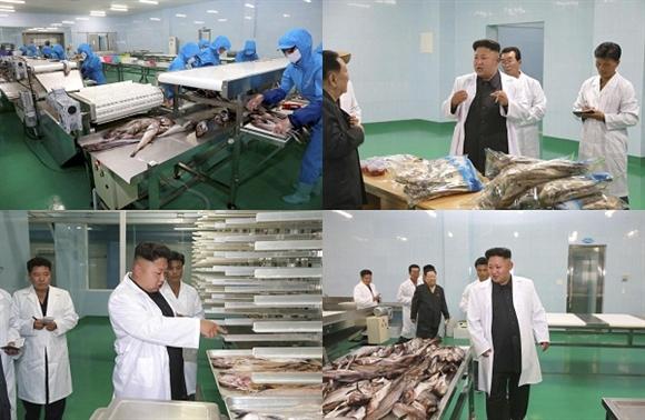 Công nhân làm việc tại dây chuyền sản xuất tại Nhà máy Thực phẩm Kalma trong chuyến thăm của nhà lãnh đạo Kim Jong-un.