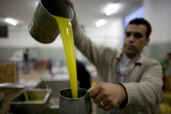 Người đàn ông Palestine trút dầu ô-liu mới ép trong vụ thu hoạch tại làng Qarawat Bani Zeid, thành phố Ramallah.