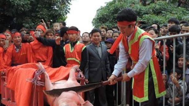Lễ Chém lợn: Con mắt Tây phán xét văn hóa bản địa?