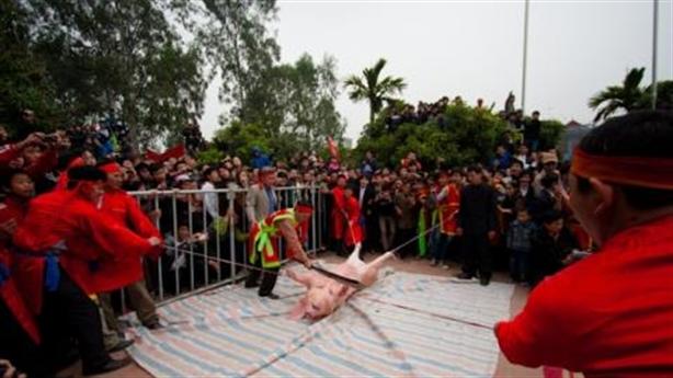 Lễ hội Chém lợn: Người Ném Thượng muốn giữ truyền thống