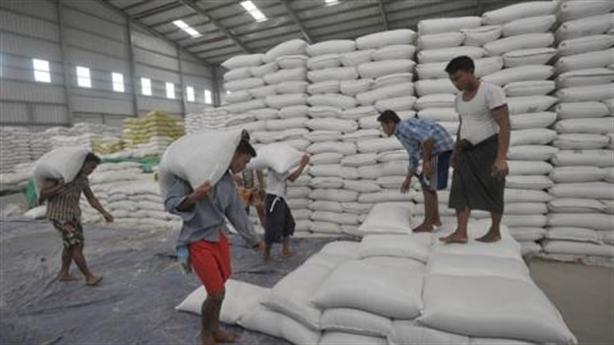 Gạo thơm Myanmar chinh phục EU, Việt Nam chật vật bán rẻ