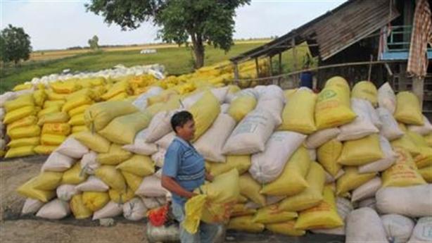 Châu Âu khát gạo thơm Myanmar: Việt Nam thiệt thòi hơn