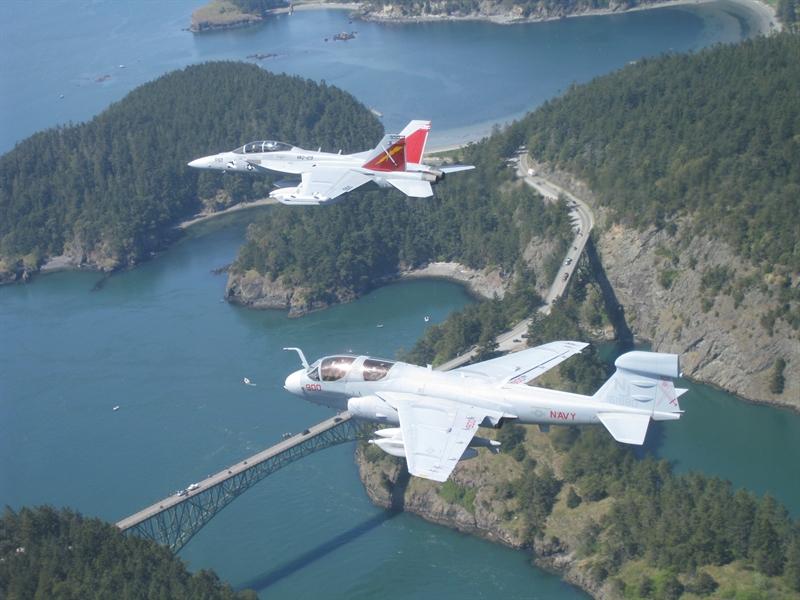 Do được phát triển trên nền tảng của F/A-18E/F, đó là loại máy bay trang bị cho các hàng không mẫu hạm của Mỹ, cho nên khả năng mang vác vũ khí của E/A-18G cực ấn tượng.