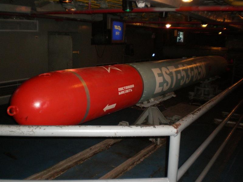 Đầu tiên là ngư lôi 53-65 hay Type 53-65. Đây là loại ngư lôi dẫn đường bằng sóng âm, được thiết kế dựa trên loại ngư lôi thế hệ trước Type 53-61. Phiên bản xuất khẩu được gọi là 53-65KE chuyên dùng để chống tàu nổi. Ngư lôi có đường kính 533mm; chiều dài 7,2m; nặng 2.070kg và trang bị đầu nổ nặng tới 300kg.