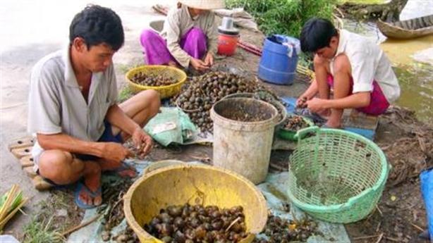 Mỹ không tính 'thoát Trung', Việt Nam sao phải vội?