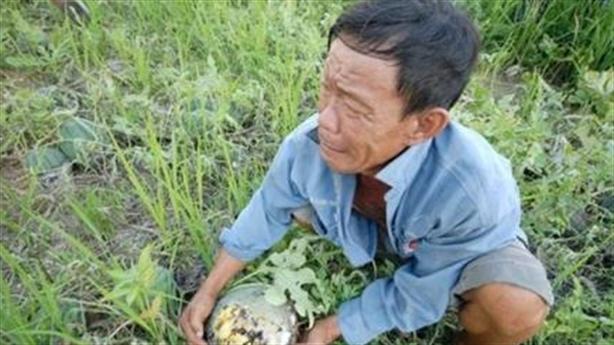 Việt Nam nghĩ lại việc thoát Trung: Không sợ nước lớn