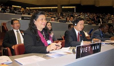 Ngoại giao nghị viện Việt Nam