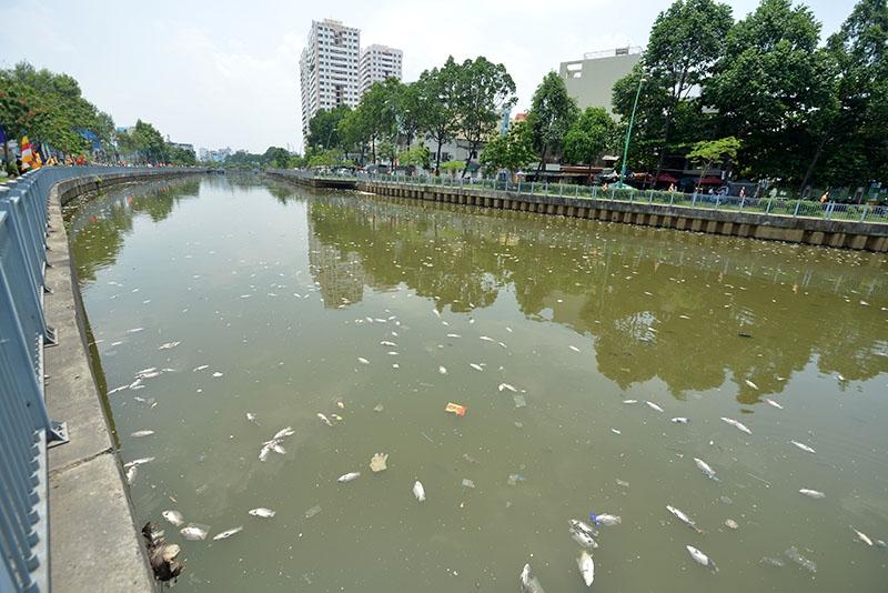 Theo người dân sinh sống quanh khu vực kênh Nhiêu Lộc - Thị Nghè, vài ngày trước, tại con kênh này cũng xuất hiện cá chết, nhưng chỉ lác đác vài con. Tới sáng nay thì cá đã chết nổi đầy kênh.