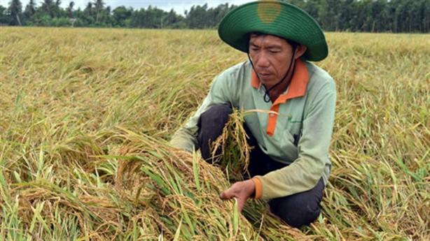 Tăng trưởng GDP: Việt Nam trông đợi gì?