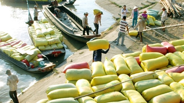 Bàn tay Trung Quốc trong chiến lược gạo Campuchia: Nguy cơ là...