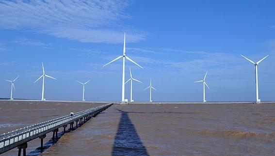 Bạc Liêu chối nhiệt điện than: Nhật Bản làm, vẫn không chọn