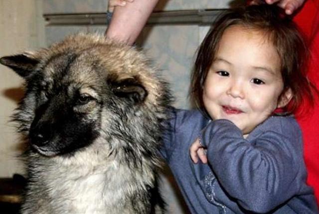 Một bé gái 4 tuổi không được đón sinh nhật cùng cha trong suốt 4 năm qua vì ông bận cộng tác xa nhà. Cô bé buồn tủi bỏ nhà đi cùng với chú chó của mình.