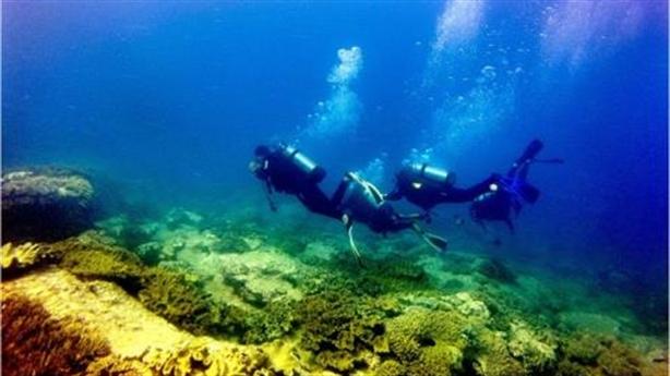 Nhiệt điện xin đổ 1,5triệu m3 chất thải xuống biển: Hỏi thật