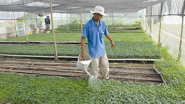 Lựa chọn nông nghiệp 4.0 theo kiểu Việt Nam