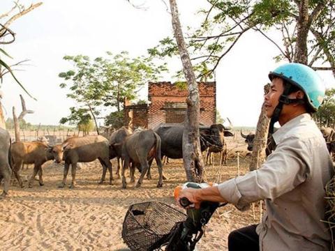 Codatan theo du duan Sai Gon Safari 'dung hinh'