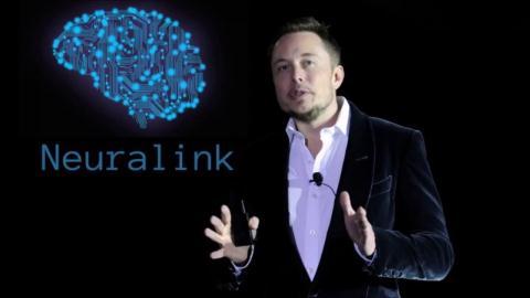 Elon Musk dinh cay chip vao nao nguoi