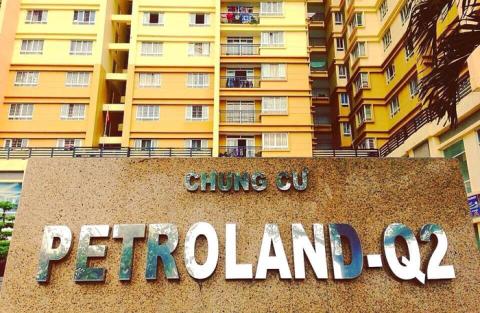 Khoi to ong Bui Minh Chinh, Petroland bien dong co dong