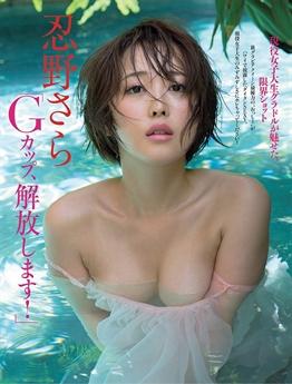 Sự nghiệp người mẫu ảnh của Sara Oshino bắt đầu từ khi cô còn là sinh viên.