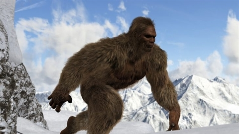 Tìm ra chân tướng quái vật người tuyết Yeti nổi tiếng
