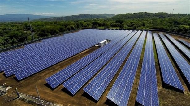 Bình Định xin chuyển gần 29ha rừng làm điện mặt trời 2.000tỷ
