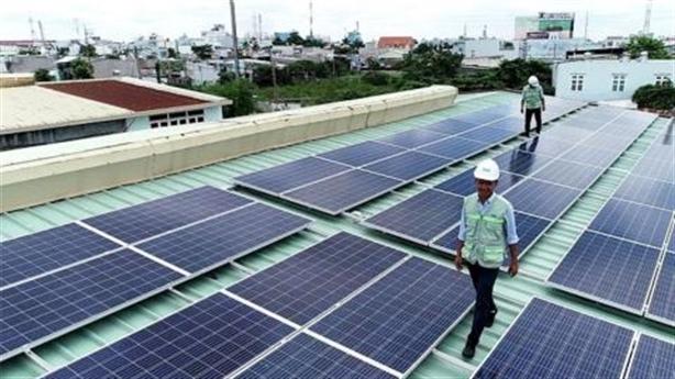 Dự án điện mặt trời lấy đất rừng: Không đánh đổi