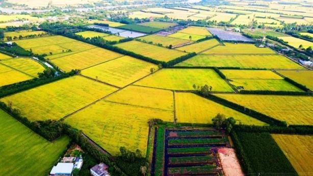 Quan điểm về Quy hoạch tổng thế phát triển bền vững ĐBSCL