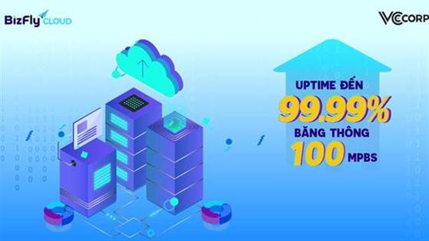 Nên thuê Cloud Server ở đâu chất lượng, chi phí hợp lý?