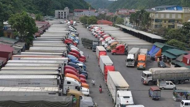 Việt Nam chưa hiểu thị trường Trung Quốc: Phản biện thẳng