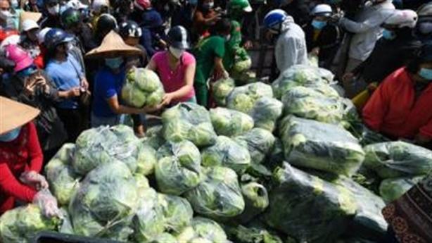 Nhìn việc giải cứu nông sản: Việt Nam thiếu điều gì?
