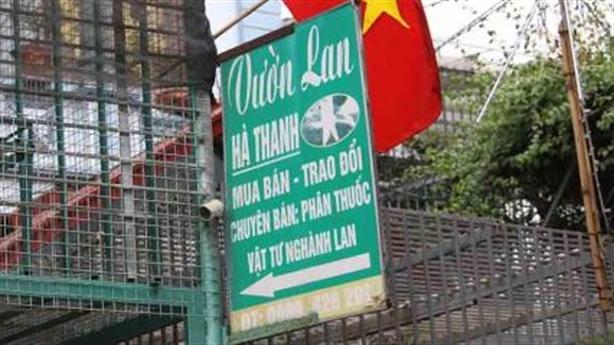 Ôm 11 tỷ mua lan: CA Hà Nội chỉ đạo làm rõ