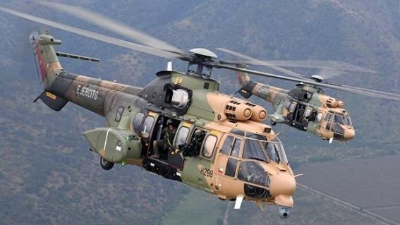 """Bí ẩn về """"báo sư tử"""" khiến 40 lính Thổ thiệt mạng"""