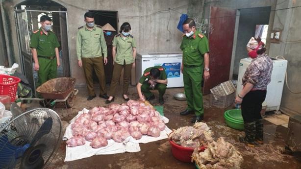 Nguồn gốc 3 tấn gà thối chuẩn bị bán ra Hà Nội