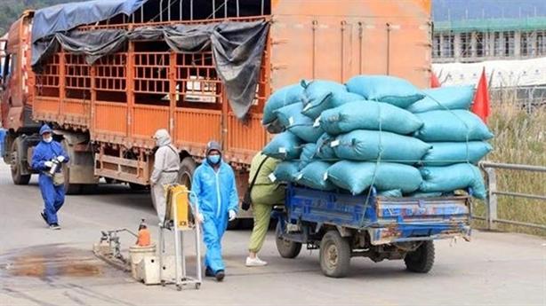 Đội vận tải xanh hỗ trợ vận chuyển hàng hóa mùa Covid-19