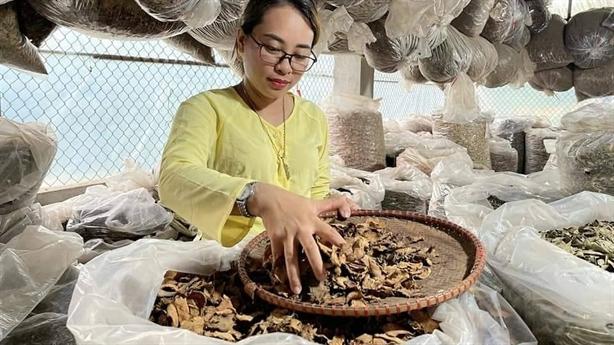 Nguyễn Thị Thái-người giữ gìn bài thuốc cổ truyền dân tộc