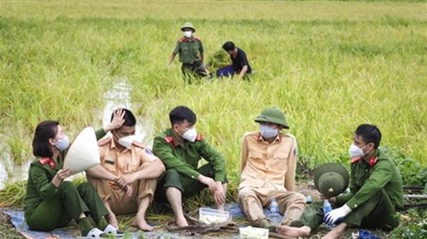 Công an giúp dân gặt lúa, dân làm ruốc tiếp tế
