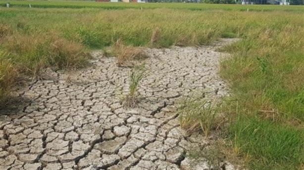 Hồ chứa nước ngọt ở Đồng Tháp Mười: Còn nhiều băn khoăn