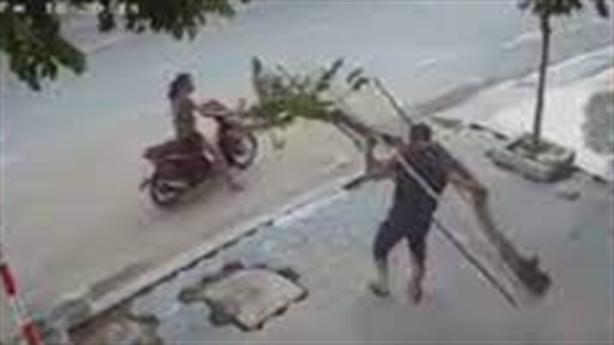 Đi ôtô trộm cây mộc hương trăm triệu đồng: Chuyên nghiệp