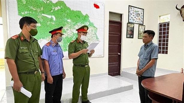 Trạm trưởng kiểm lâm nhận hối lộ cho lâm tặc phá rừng