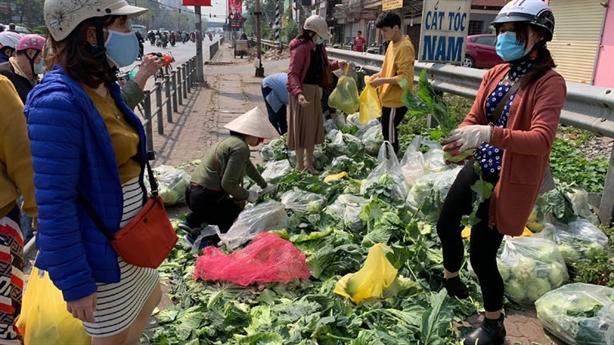Nông dân không được bảo vệ sản xuất trong quy hoạch